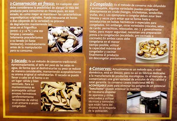 Spanien Trüffel Okt 2010 Navaleno Pilzzentrum Tafel Aufbewahrung Kälte