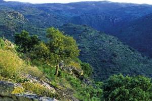 Faia Brava Blick in den Canyon des Rio Coa 2